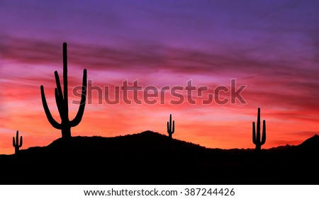 Sunset in Wild West - Colorful Sunset in Wild West Desert of Arizona with Cactus - stock photo