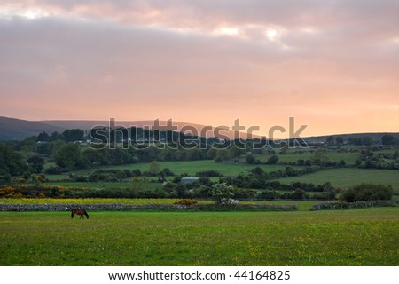 Sunset landscape with a lonely horse in foreground - stock photo