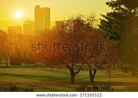 Sunset Light. Girl on a Park Tree, Denver, Colorado Skyline and Beautiful Sunset Light. Autumn Theme. Cities Collection. - stock photo