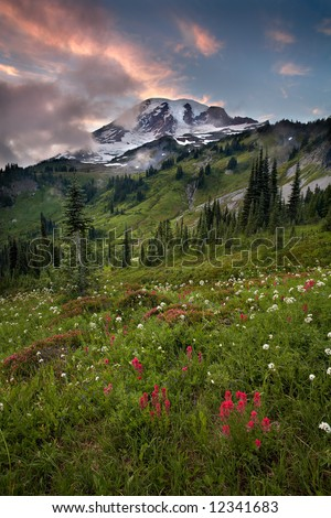 Sunset Mount Rainier national park - stock photo