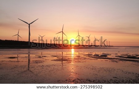 sunset of wind farm at gaomei wetlands, refuge, taiwan