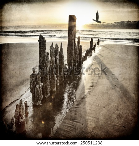 Sunset on an Alaskan beach with old wooden pillars and a bird flying by processed with textures for an artistic look. - stock photo