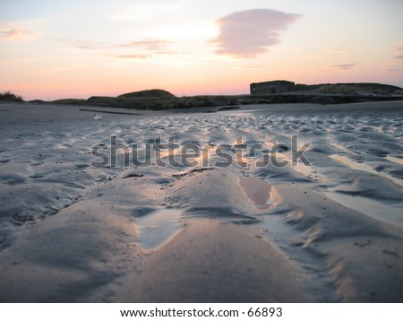 Sunset on beach- frogs perspective. - stock photo