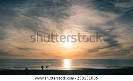 Sunset on Beach with Horizon Line - Pacific Ocean Waves on West Coast in Santa Monica California with Silhouette of Palm Trees and Sand - stock photo