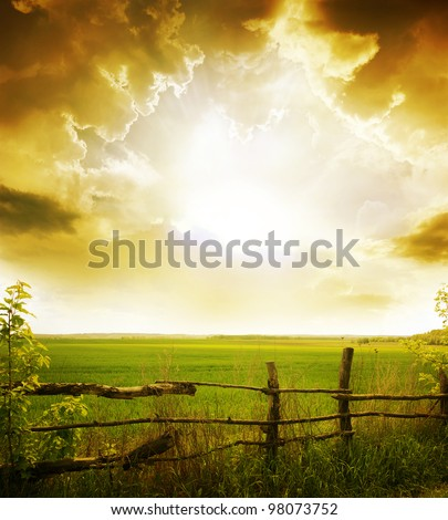sunset on field at summer - stock photo