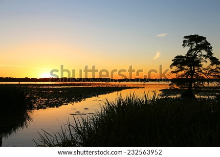 Sunset on Reelfoot Lake, Tennessee - stock photo