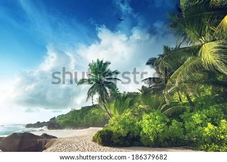 sunset on Seychelles beach - stock photo