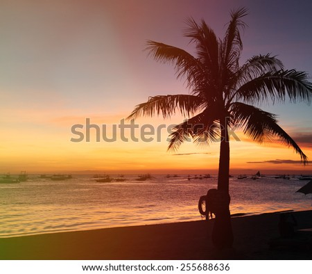 sunset on the beach with palm tree - stock photo