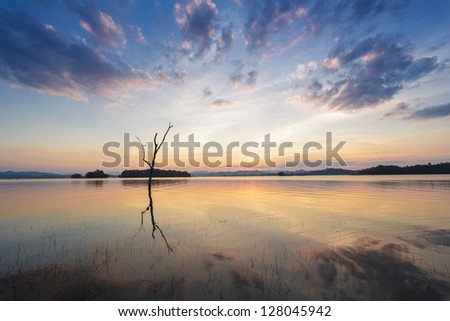 sunset on the river and wooden