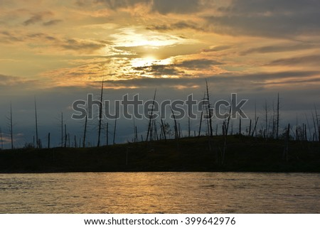 Sunset on the river Fishing near Norilsk. Sunset on the background of dry wood from the dead trees.
