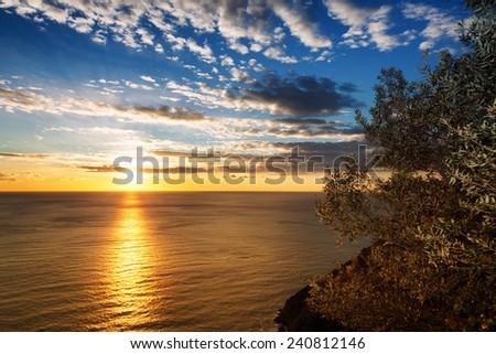 sunset on the sea - stock photo