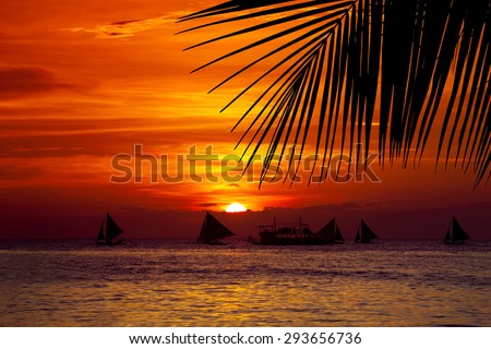 Sunset on tropical beach with sailing boats through palm tree leafs
