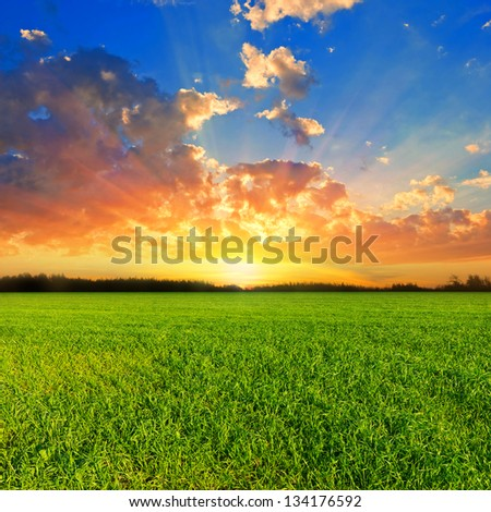sunset over a green fields - stock photo