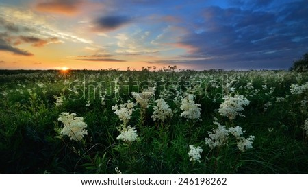 Sunset over a mysty field in countryside Latvia - stock photo