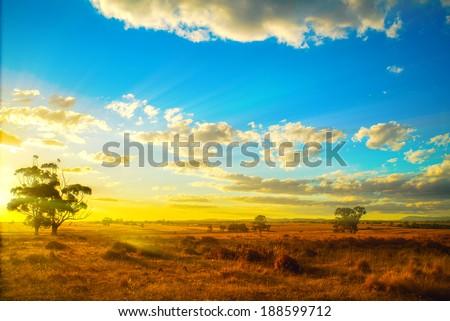Sunset over Australian backyard  - stock photo