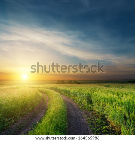 sunset over dirty road in green fields - stock photo