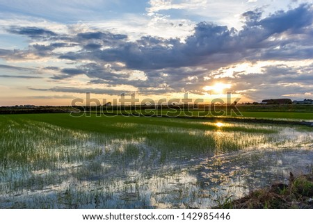 Sunset over fields in Lombardy - Italy - stock photo