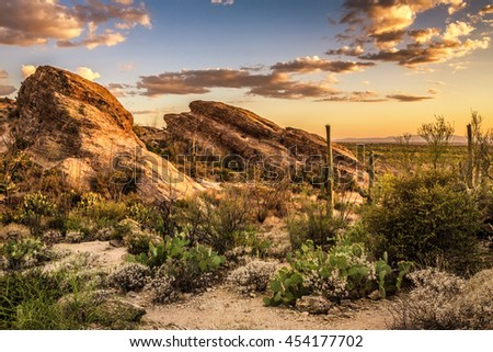 Tucson arizona stock images royalty free images vectors for Landscaping rocks tucson