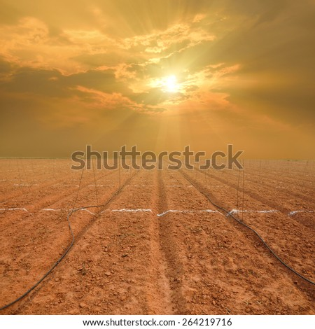 sunset over ploughed field - stock photo