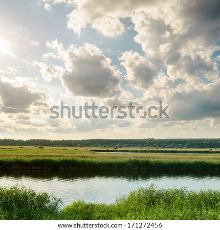 sunset over river with green canes - stock photo