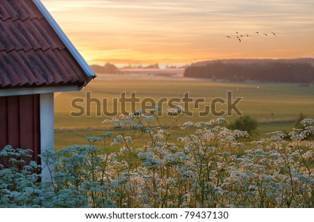 Sunset over the fields. - stock photo