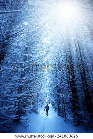 sunset over the path in a winter deep forest - trees covered with snow and a man walking in distance - stock photo