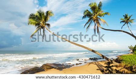 Sunset over the sea. Sri Lanka - stock photo