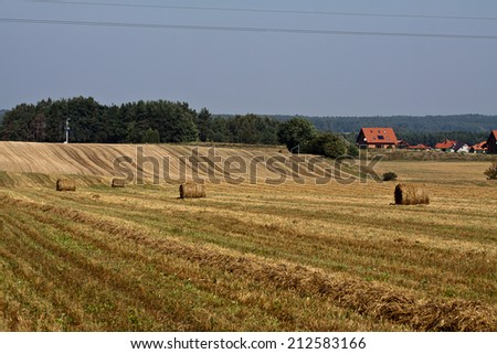 sunset over wheat field, field after the harvest  - stock photo