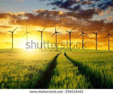 Sunset over wheat fields with wind turbines