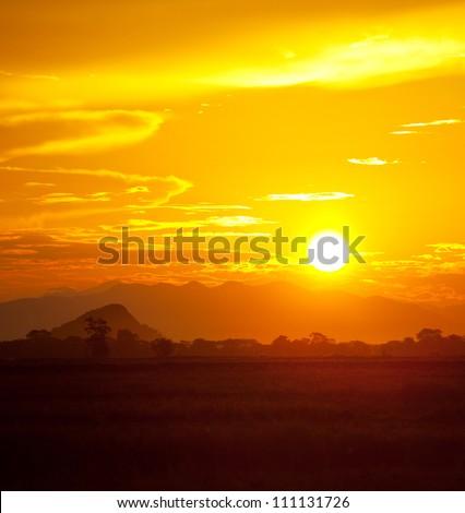 sunset scene on Sri Lanka - stock photo