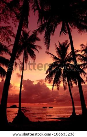 Sunset scene on the sea - stock photo