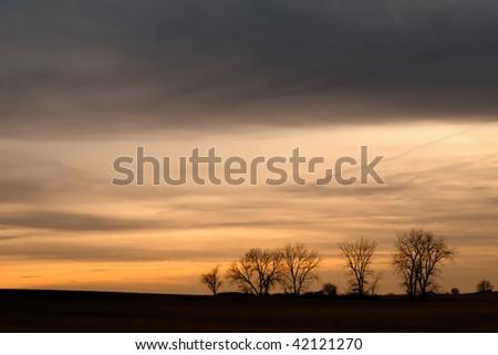 Sunset Storm over Treeline on the Plains - stock photo