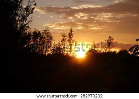 Sunset through the trees on the North Shore with clouds in the sky on Oahu.  - stock photo