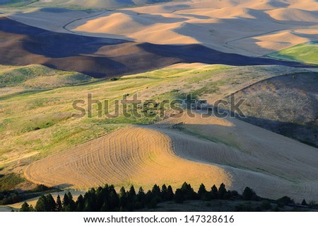 sunset view of a hilltop, Palouse, Washington State - stock photo