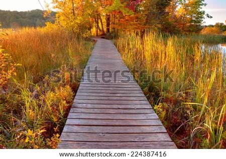 Sunset Walk. Boardwalk through a protected wetlands area at sunset. Ludington State Park. Ludington, Michigan. - stock photo