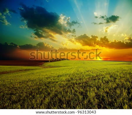 sunset with dramatic sky over agricultural green field