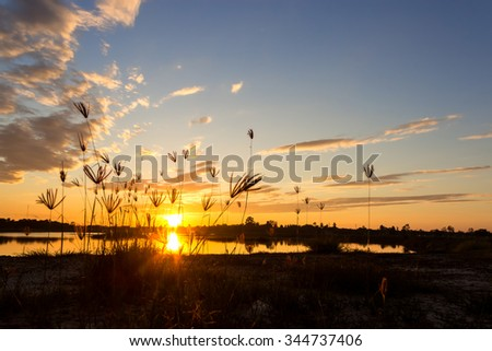 Sunset with on the lake - stock photo