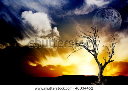 Sunset with tree and moon - stock photo