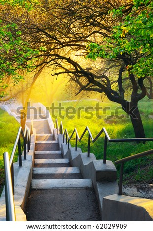 Sunshine in beautiful park. Nature composition. - stock photo