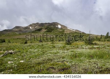 Sunshine Meadows hike in Banff National Park, Alberta, Canada - stock photo