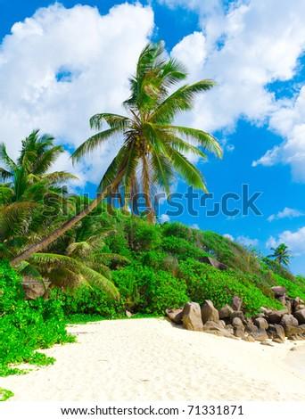 Sunshine Wallpaper Coast - stock photo