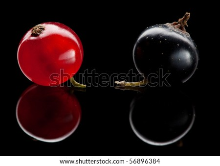 Super macro of red and black currant over reflective background - stock photo