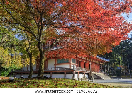Superb view, fall color at Daigoji temple, Japan in the autumn around november
