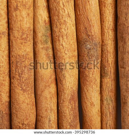 Surface covered with the multiple cinnamon sticks as a background texture