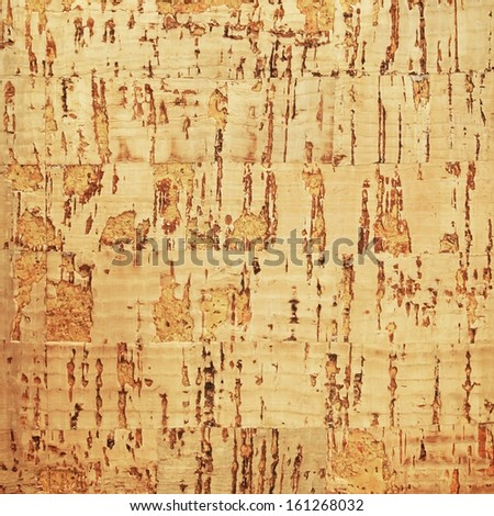 Surface from the cork tree - stock photo