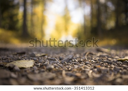Surface Level Low Angle View of Small Stones as part of Gravel Road in Isolated Forest Area in Tirol, Austria with Shallow Depth of Field and Selective Focus - stock photo