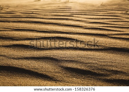 Surface level shot of the desert and the wind pattern on the sand