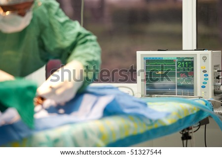 surgical procedure at a veterinary hospital - stock photo