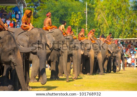 SURIN, THAILAND - NOVEMBER 20, 2010: A row of elephants and their trainers wait on the performance field at the annual Surin Elephant Roundup on November 20, 2010 in Surin, Thailand - stock photo