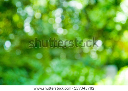 Surprise colorful bokeh art of many flowers. - stock photo